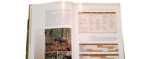 IPC Groene Ruimte, Arnhem | Boek concept-ontwerp | Opmaak | Proofing en Prepress