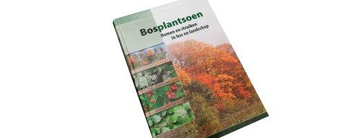 Dinkla Scheidingsmediation, Oisterwijk | Branding & Corporate Identity | Webdevelopment